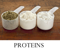 Which Protein Is Right For You?